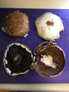 The BEFORE mushrooms are on the left and the AFTER ones are beautiful on the right.