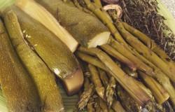Crock Pot Steamed Summer Vegetables make a delicious seasonal side dish!